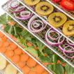 Fruit Jerky Pro 6 Essiccatore
